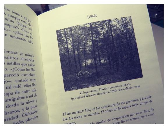 thoreau_diario de walden_ interiores